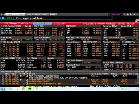 Introduction To Bloomberg Terminals