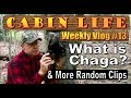 OFF GRID CABIN LIFE   Chaga Preparation & Random Clips Of Our Life Out Here.