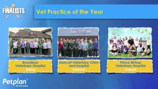 Eastcott Vets Clinic & Hospital Twice Winners Of The Pet Plan UK Vets Practice Of The Year