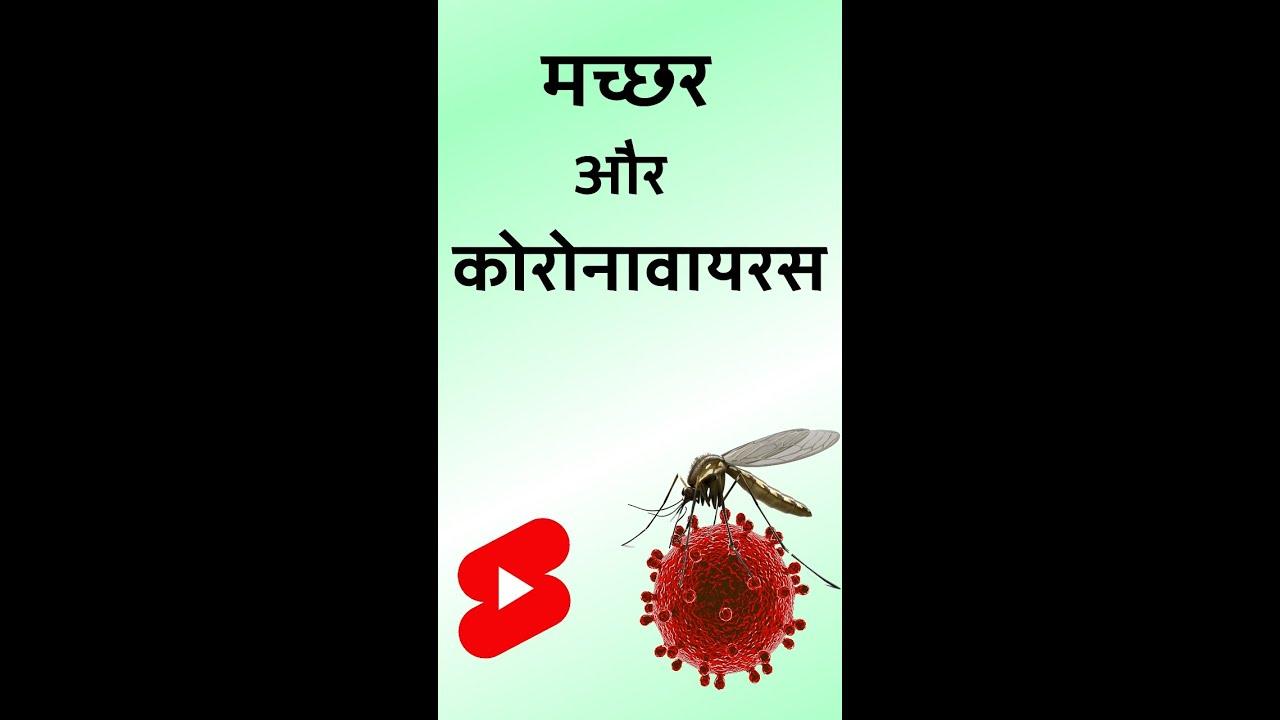 कोरोनावायरस और मच्छर   समझिए इस अफवाह को