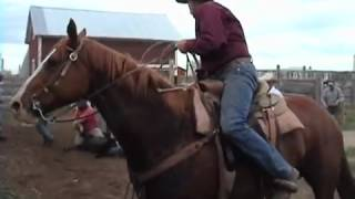 The Gypsy Cowman _ Trailer
