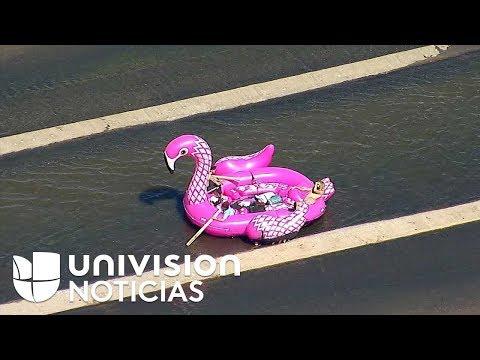 El flamenco inflable que navegó el río Los Ángeles hasta que la policía lo detuvo