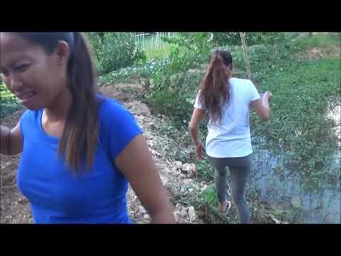 Kirsty Gallacher Pokies (Soft Nipples Go Hard On Live TV)из YouTube · Длительность: 1 мин10 с