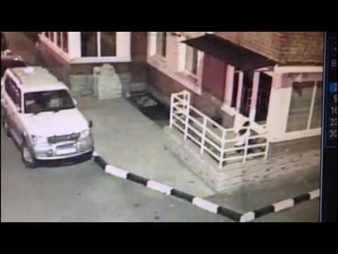 Очевидцы в Благовещенске девушка украла два горшка с цветами