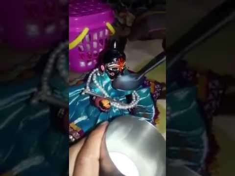 लड्डू गोपाल दूध पीते हुए (must watch)