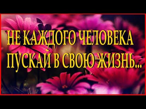 МУДРАЯ ПРИТЧА ДЛЯ РАНИМЫХ ЛЮДЕЙ Читает Леонид Юдин