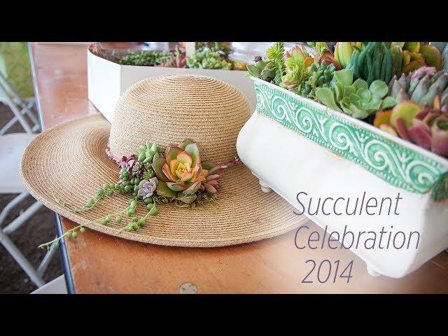 Succulent Celebration 2014 - Fat Plant Co