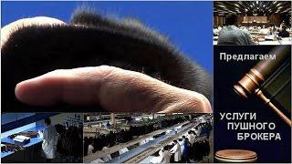 Каталог пушнины - типы меха(Каталог аукционных типов меха. Скандинавские типы меха. Норка, Лиса, песец, енот, каракуль, соболь, шиншилла..., 2015-02-21T02:37:57.000Z)