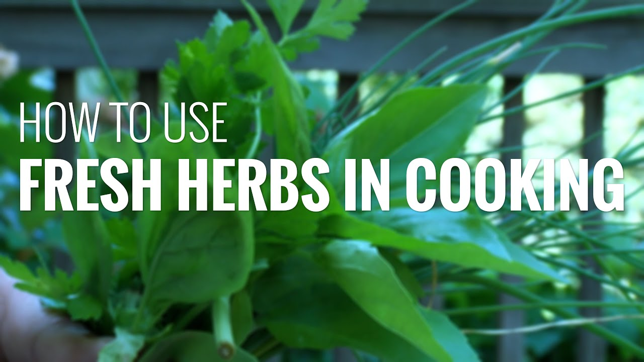 Chefs buying fresh herbs - How To Cook With Fresh Herbs Using Fresh Herbs In Cooking To Boost Flavor And Nutrition