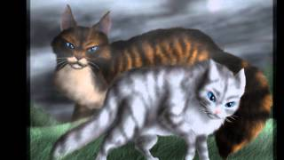 Top 10 Warrior Cat Couples Plus Their Theme Songs