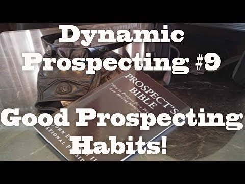 "Dynamic Prospecting 9 ""Successful Prospecting Habits"""