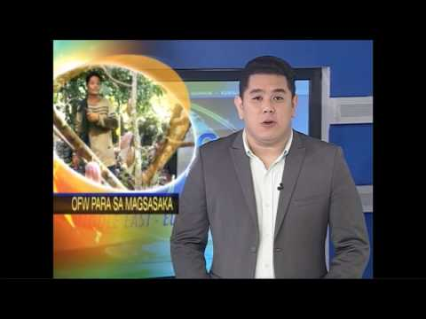 Cacao Farming and OFWs on TFC