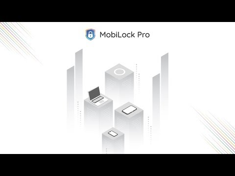 MobiLock Pro - Product Overview