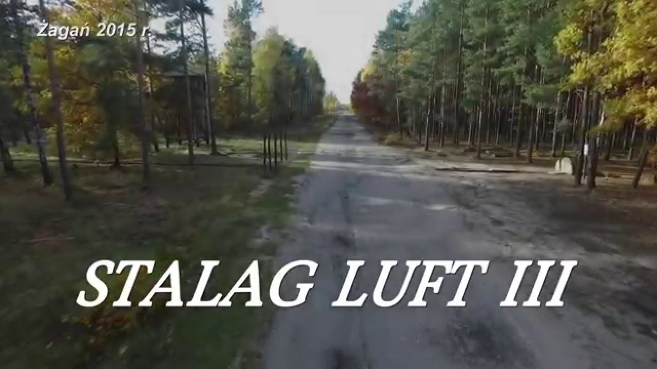 the great escape from stalag luft On 24 march 1944, 87 raf and other allied airmen escaped from the german pow camp stalag luft iii by a tunnel in what came to be known as the great escape.