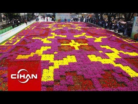 Dünyanın en büyük lale halısı İstanbul'da serildi