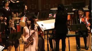 HKAO Pink Symphonic Night 8 feb 2015 part 2