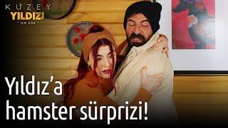Kuzey Yıldızı İlk Aşk 47. Bölüm - Yıldız'a Hamster Sürprizi!