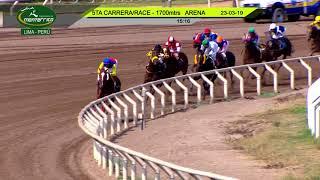 Vidéo de la course PMU HANDICAP 1700