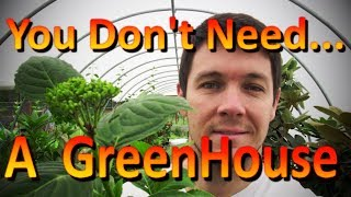How to Overwinter Rooted Cuttings | Protect Cuttings from Frost Damage