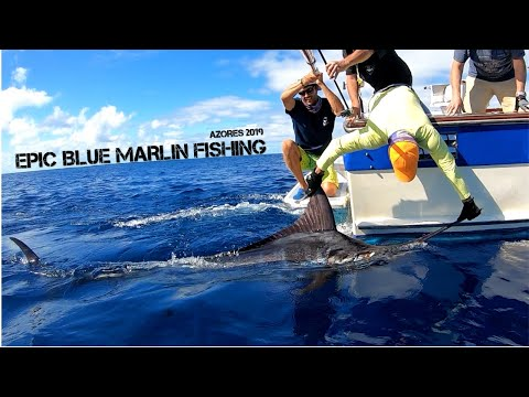 EPIC Blue Marlin Fishing Azores 2019