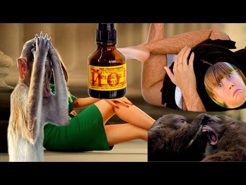 Маски для лица мед вазелин касторовое масло йод