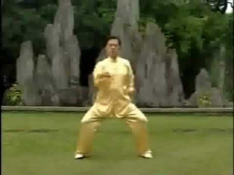LIANG GONG SHI BA FA, HOU SHI BA FA, SHI BA FA XU JI I QI GONG (completo)