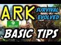 ARK Survival Evolved Xbox One Basic Tips/Guide