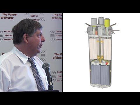 Dr. David LeBlanc  @ TEAC7 -  IMSR: Terrestrial Energy's Integral Molten Salt Reactor