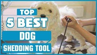 ✅  Best Dog Shedding Tool 2019 * Top 5 Dog Shedding Tool (Reviews)