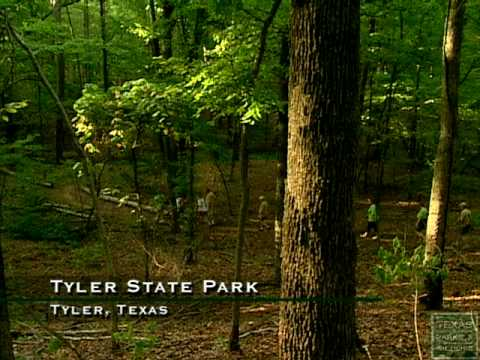Tyler State Park Texas Official