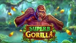 Superb Gorilla Slot Machine - Cash Frenzy Casino Game