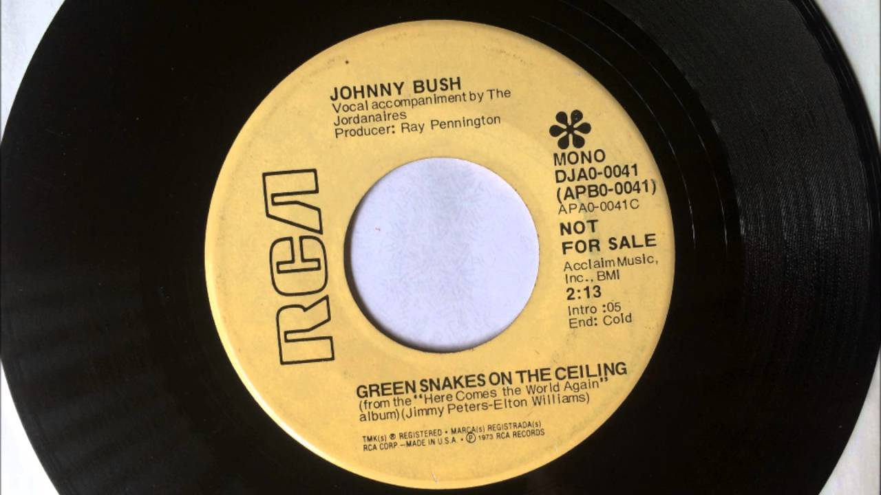 Green Snakes On The Ceiling Johnny Bush 1973 Vinyl 45rpm