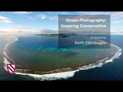 Keith Ellenbogen   Ocean Photography    Radcliffe Institute