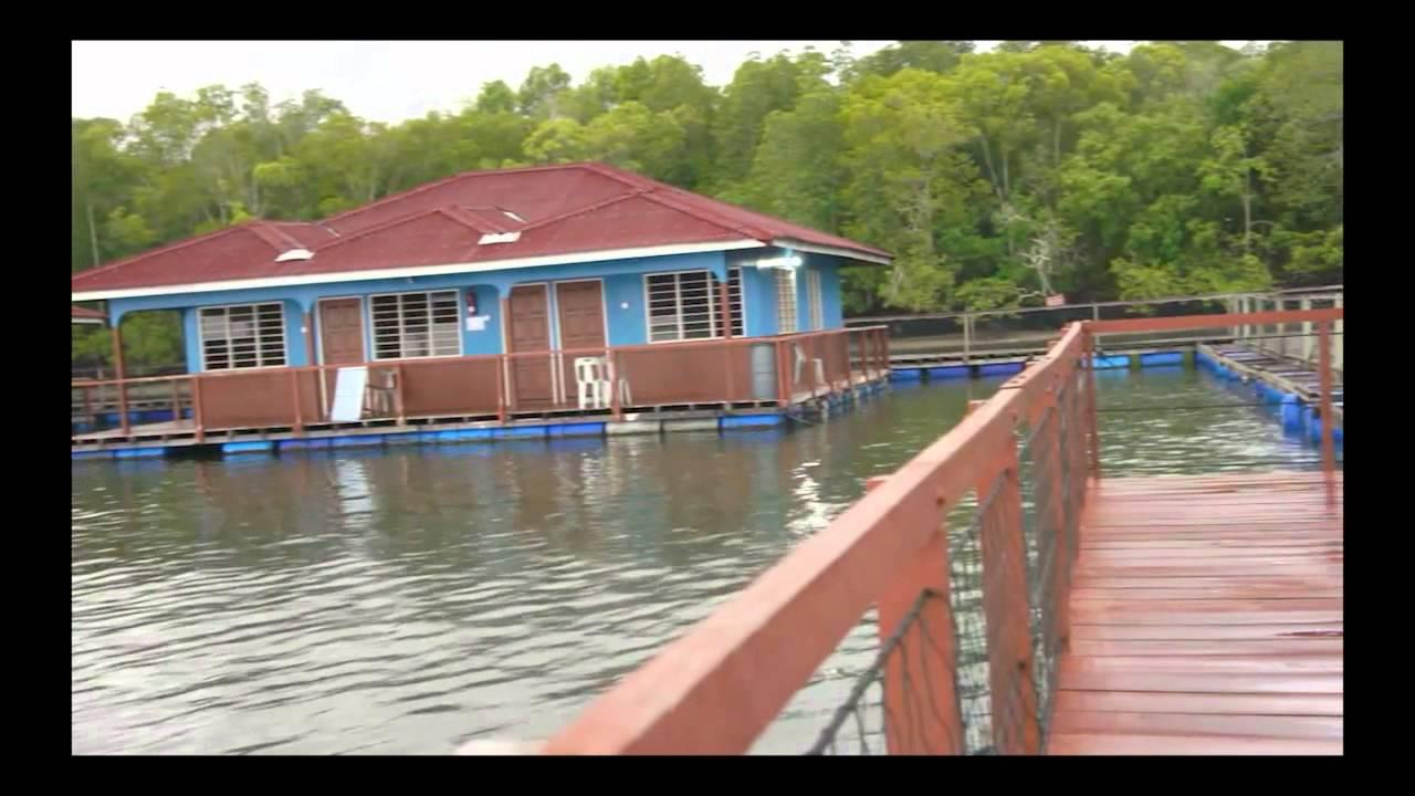 Chalet Terapung Segantang Garam, Merbok Kedah Darulaman - YouTube