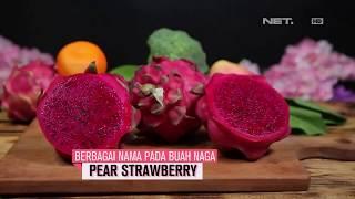 asal usul buah naga
