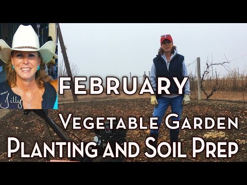 North Texas Vegetable Garden Planting and Soil Prep - February