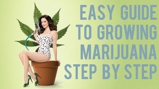 Complete Easy Marijuana Growing Video Guide