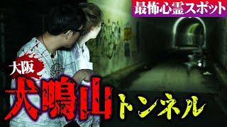 日本一危険な心霊トンネル。身の危険を感じた心霊スポットが怖すぎた【 心霊スポット 犬鳴山トンネル 大阪 心霊 幽霊 】