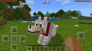 How To Ride Any Mob in Minecraft Pocket Edition (Rideable Mobs Addon)