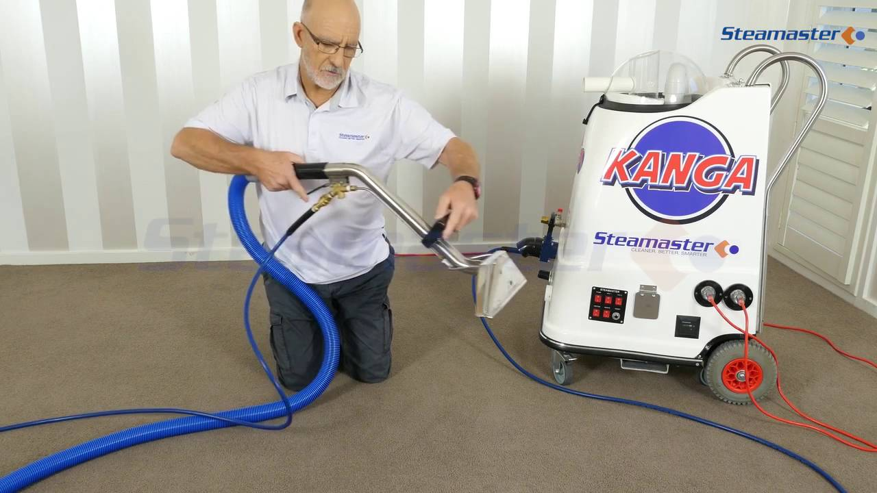 Professional Carpet And Floor Steam Cleaner