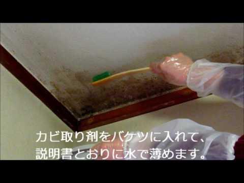 部屋 カビ 取り 畳のカビ掃除はたったの6ステップ。使う道具は家にあるものだけ!