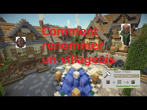 COMMENT RENOMMER UN VILLAGEOIS - Minecraft