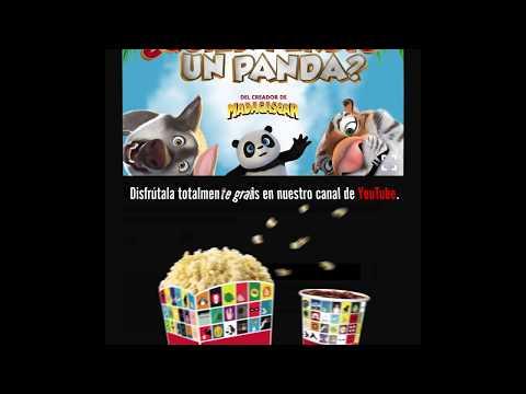 La Magia Del Cine en Casa: ¿Quién perdió un panda?
