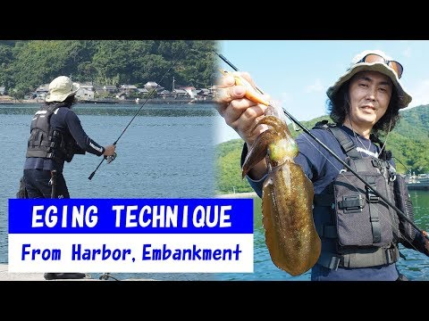 "YAMASHITA SQUID Fishing  (EGING) from Harbor, Embankment.""How to catch SQUID"" explained."