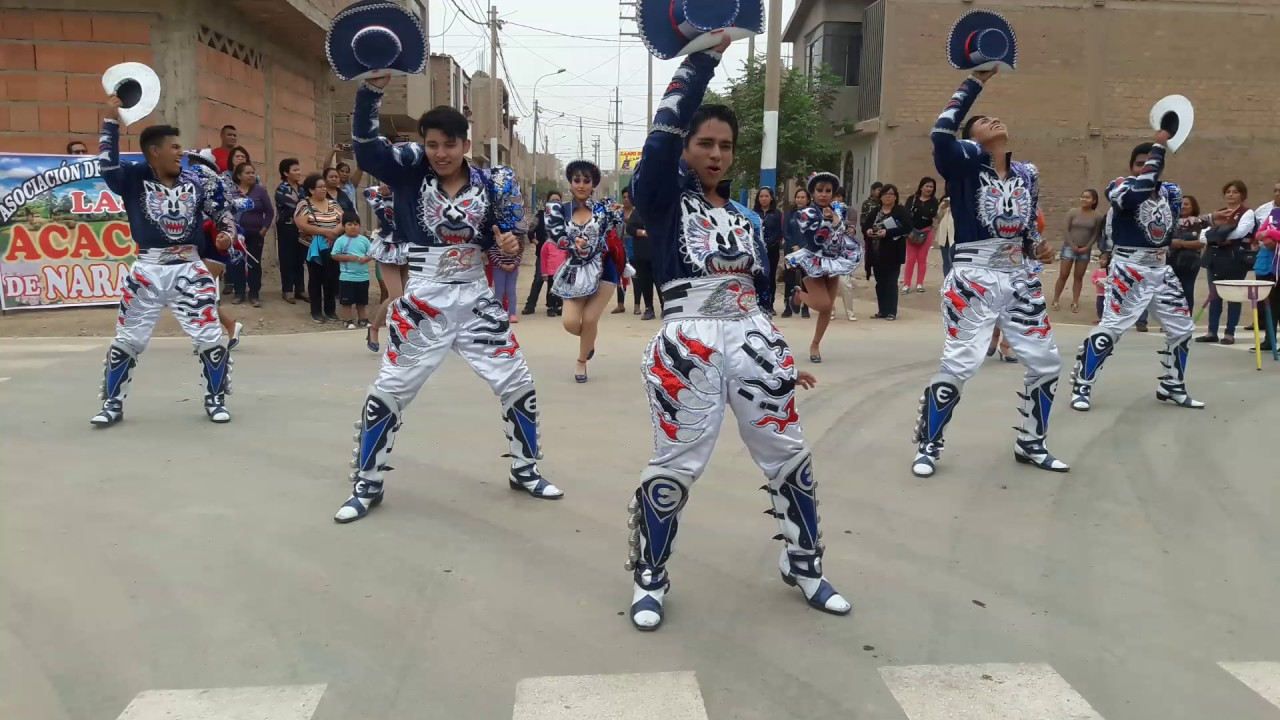 Bailoterapia reggaeton para bajar de peso wilson dancesport