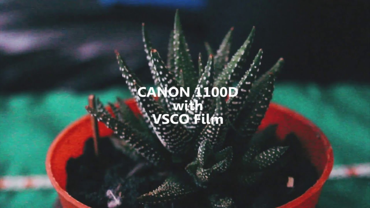 CANON 1100D with VSCO Film Look Video Test