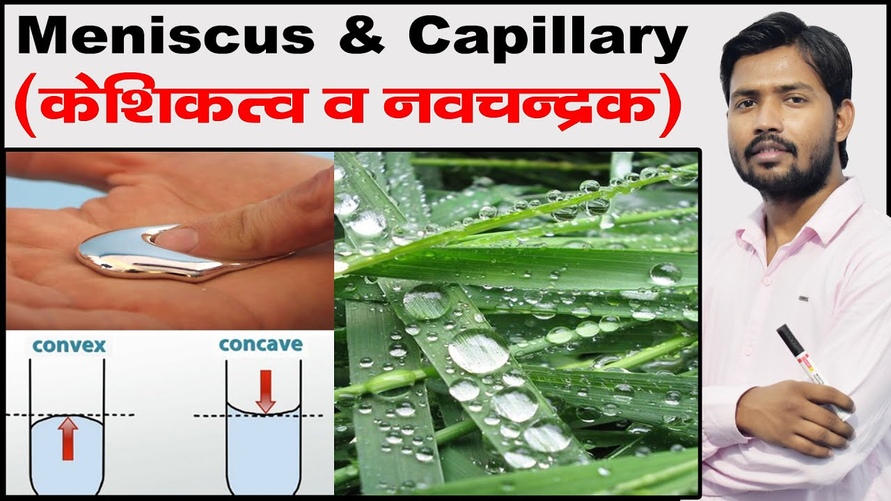 Meniscus | Capillary Fall and Rise | Angle of Contact | Cohesive & Adhesive  Force | Fluid Mechanism