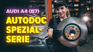 Montage AUDI A4 (8EC, B7) Rippenriemen: kostenloses Video