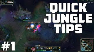 Quick Jungle Tips - How To Kite Jungle Camps