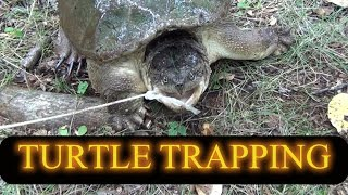 Turtle Trapping 2014